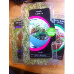 Sprouts Alfalfa Blends