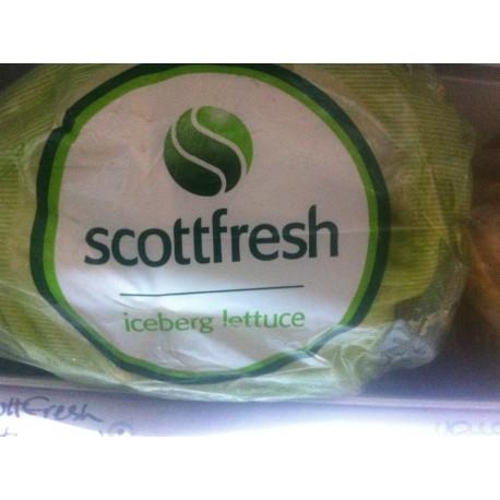 Lettuce Iceberg Bagged