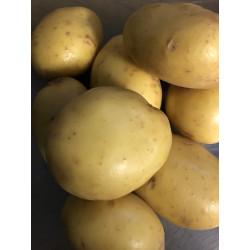 Potatoes Sprayfree Agria 5kg