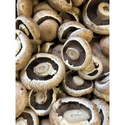 Mushrooms Portabello .250 gm pack
