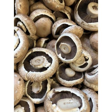Mushrooms Portabello .250 gm pack
