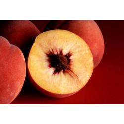 Peaches Yellow flesh .500 gm